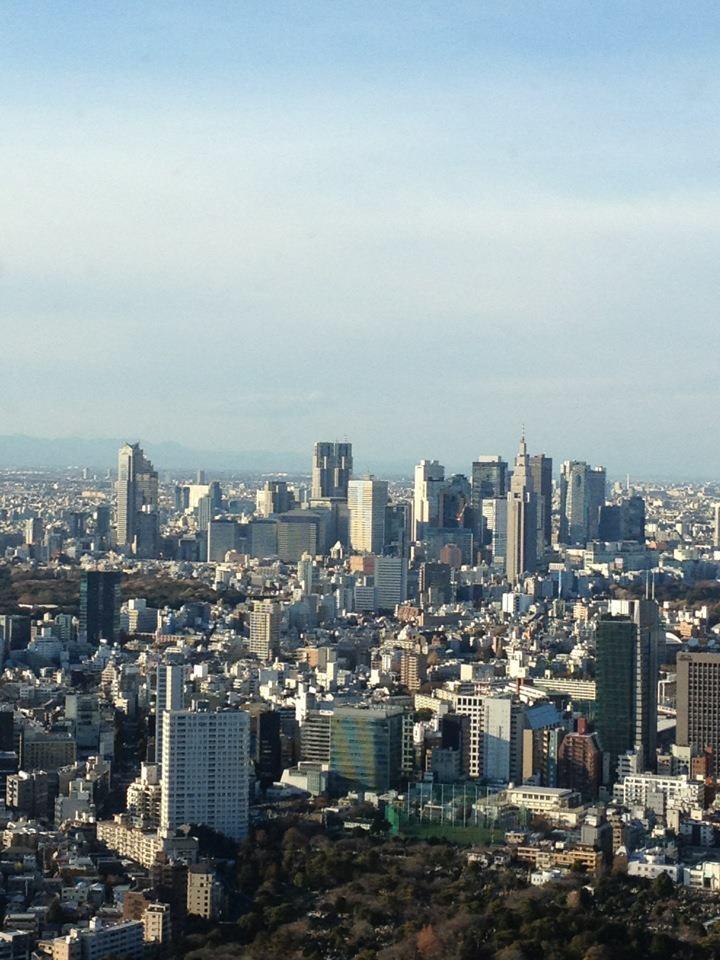 東京上空(新宿方面)