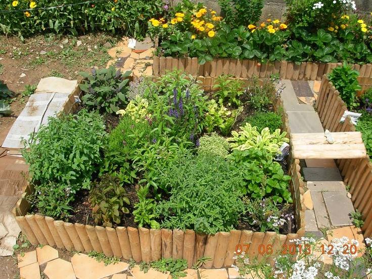 Ervas aromaticas , assim com poejo,salva rocha, stevia,salva malhada, lucia-lima,salva flor,salva ananas,e outras...