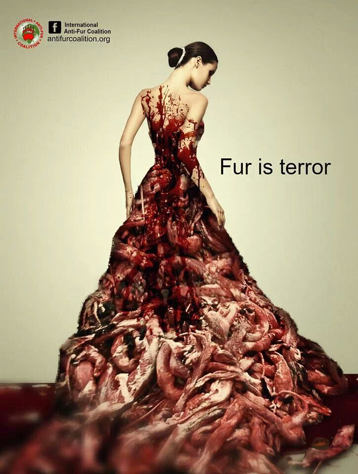 ...how brides in fur look to the companionate...