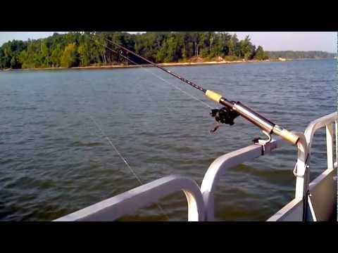 Fishing best pontoon boats and rod holders on pinterest for Best fishing pontoon