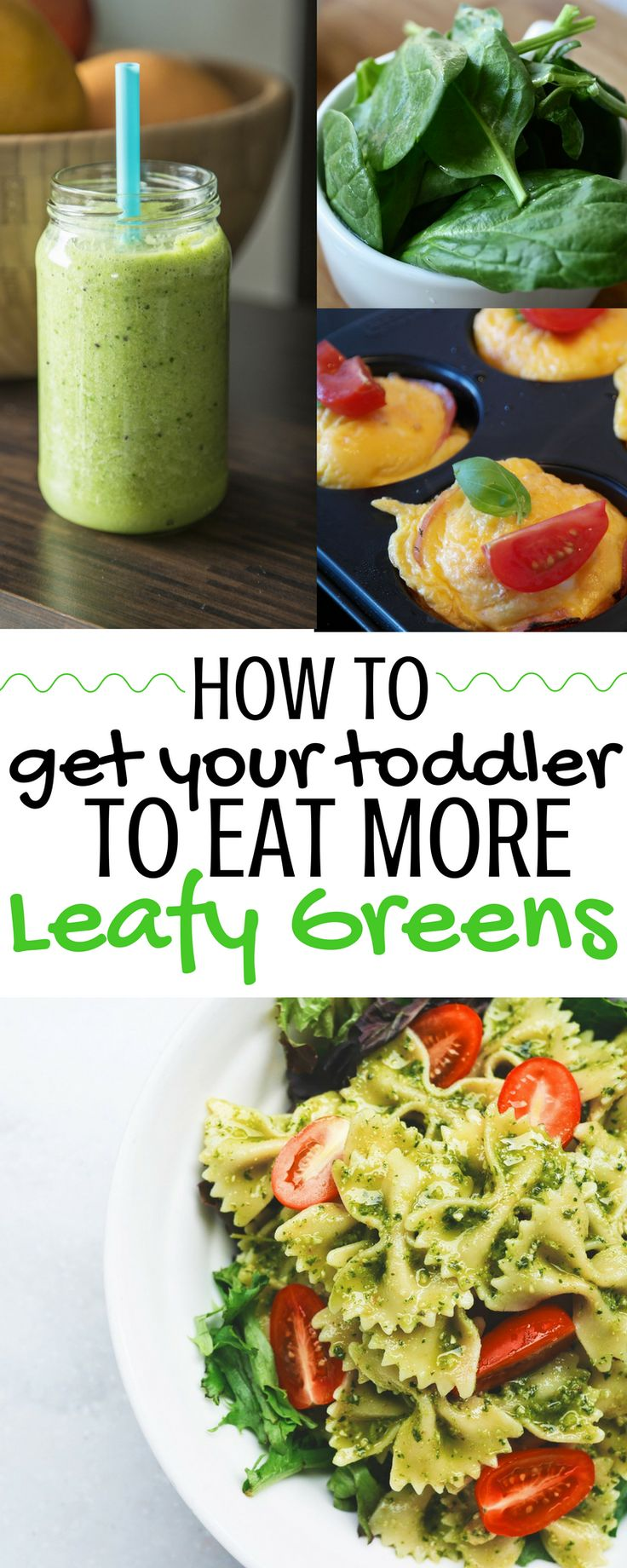 How to Get Your Toddler to Eat More Greens! Getting toddlers to eat greens can be tough. Try some of these easy and yummy ideas to get your picky toddler eating more greens. Click for tons of ideas!