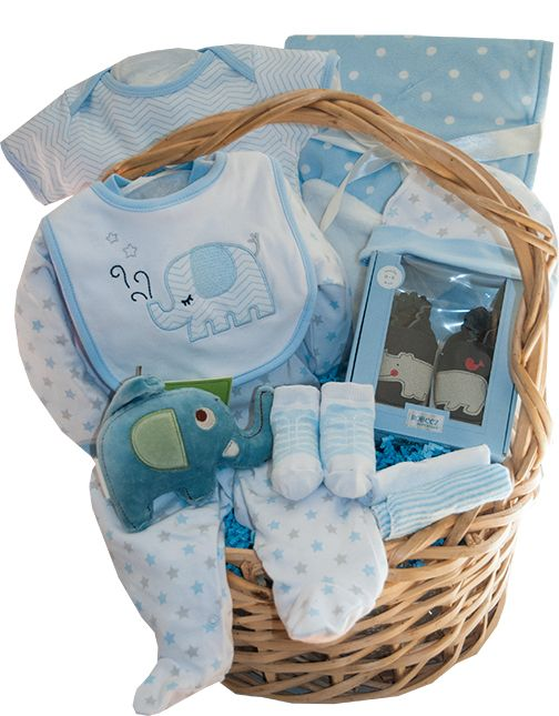 Welcome Home Baby Boy Baby Gift Basket - Toronto Canada