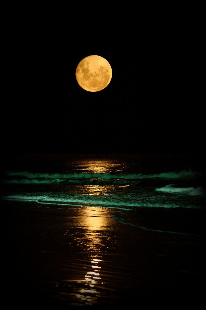 Full moon over the shore.