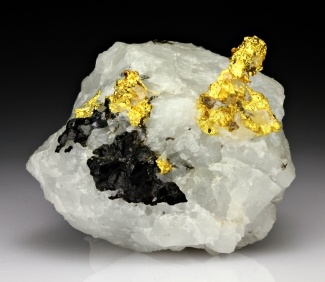 Gold with Quartz from McIntyre Mine, Tisdale Township, Porcupine Mining District, Timmins Area, Cochrane District, Ontario, Canada .