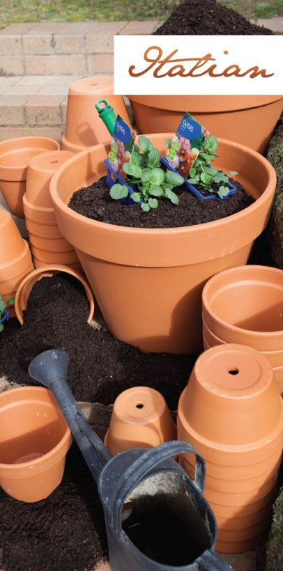 Northcote Pottery's Italian Collection features traditional terracotta pottery, available in a range of shapes and sizes. These simple but elegant shapes offer great practicality and timeless design. Now produced with advanced technology, the Italian range is made to exacting standards to provide quality and affordable options for all green thumbs. http://www.northcotepottery.com/pottery/italian