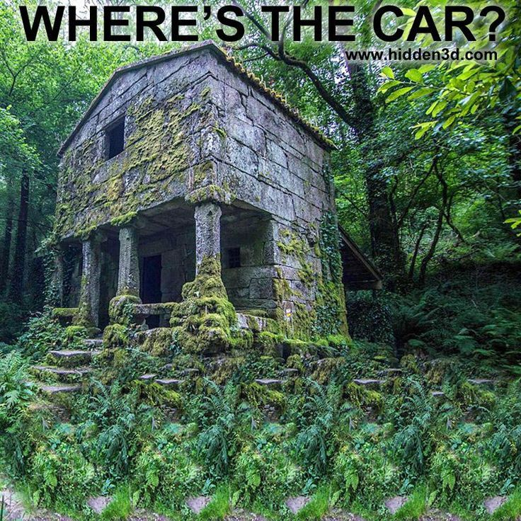 Stereogram By 3dimka Find The Car Tags Forest Ruins Car Beetle Abandoned Jungle Hidden 3d Pict Illusion Pictures Optical Illusions Pictures Hidden Pictures