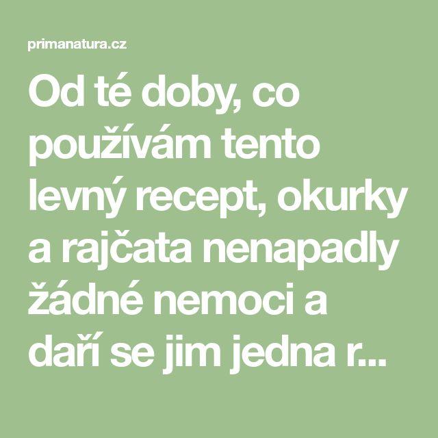 Od té doby, co používám tento levný recept, okurky a rajčata nenapadly žádné nemoci a daří se jim jedna radost! - primanatura.cz