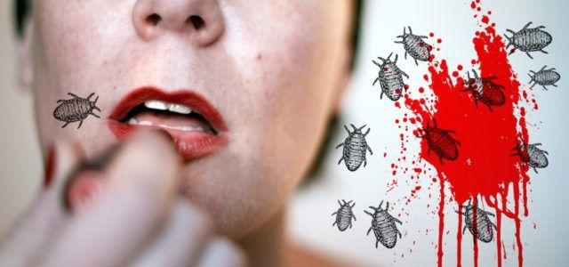 Dschungelprüfung: Insekten, Kot und Kotze in Essen und Kosmetik