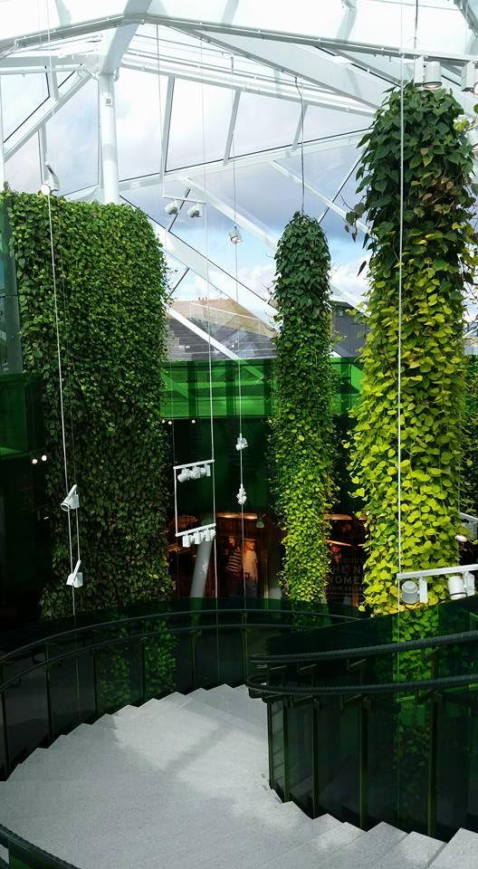 12003370_1182188821797449_1075090160929685384_n 528×960 Pixels · Garden  WorksVertical GardensLandscape ArchitectureGreen ...