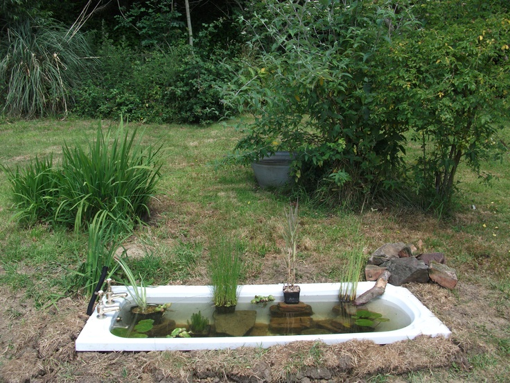 1000 images about bathtub ponds on pinterest gardens for Koi pond tubs
