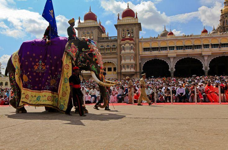 "In Mysore, India, the Vijayadashami Elephant procession during Mysore Dasara is called Jumbo Savari (""going to the Shami (Banni) tree""). #MysoreDasara #Mysore #festivalseason #festiveseason #Mysore #Karnataka #Dasara #festivalsinIndia #travelIndia #TravelinIndia #India"