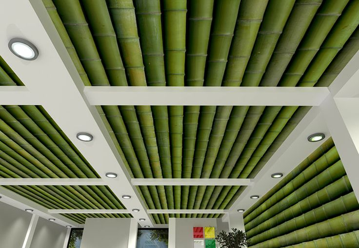Best 25 Bamboo Ceiling Ideas On Pinterest Bamboo Roof