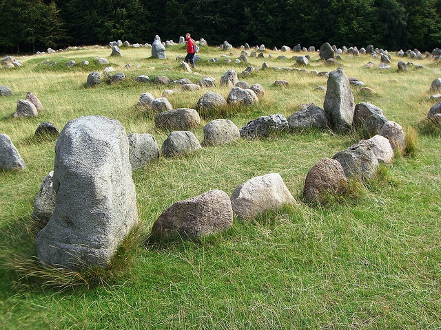 Viking History (Denmark). 'The Vikings were not just plunderers but successful traders,