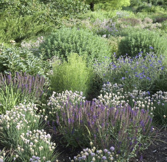 18 Front Yard Landscaping Designs Ideas: The Know Maintenance Perennial Garden
