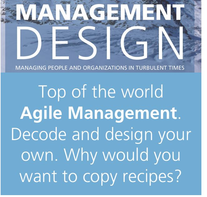 Set the baseline for your agile transformation? Need to make it work. Here is how: #StrategicAgility through #managementdesign @MgmtDesignBook . For a huge step-change in performance and innovation. https://agilityinsights.net/en/publications/management-design