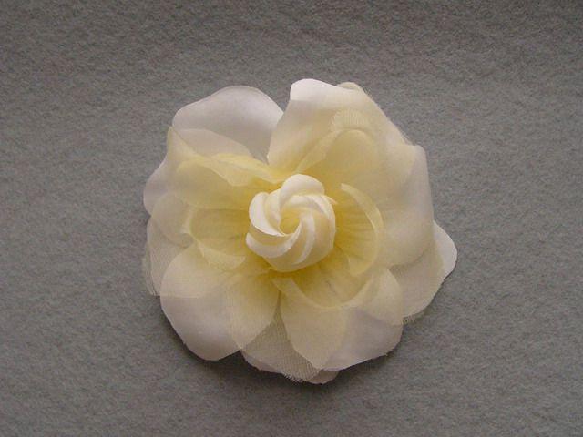 746111 1201188 - Růže se špendlíkem