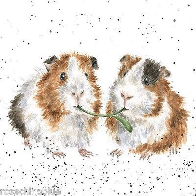 Wrendale Designs Country Set Greeting Card Guinea Pigs lettuce be friends