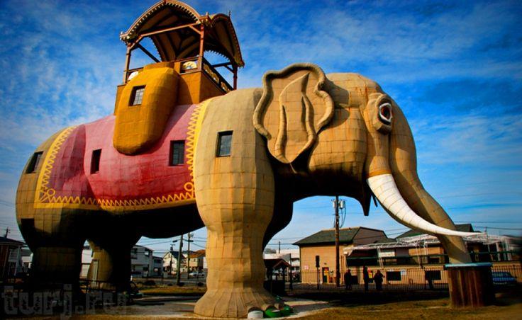 дом слон