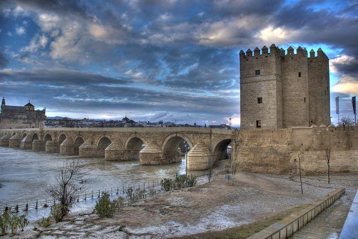 Roman Bridge Cordoba - Perry Van Munster