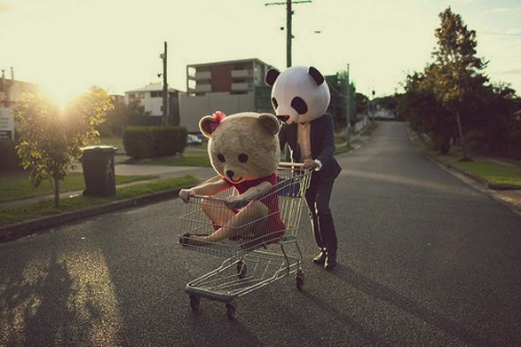 Cute panda and bear!