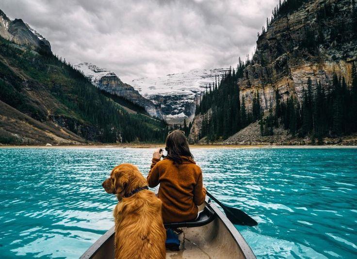 #boats, #girls, #dogs, #animals, #golden_retrievers, #pictures, #лодки, #девушки, #собаки, #животные, #Золотистые_ретриверы, #картинки https://avavatar.ru/image/2528