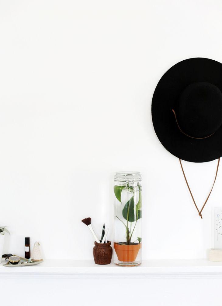 1000 id es propos de plantes aquatiques sur pinterest herbes d 39 int rieur jardin d. Black Bedroom Furniture Sets. Home Design Ideas