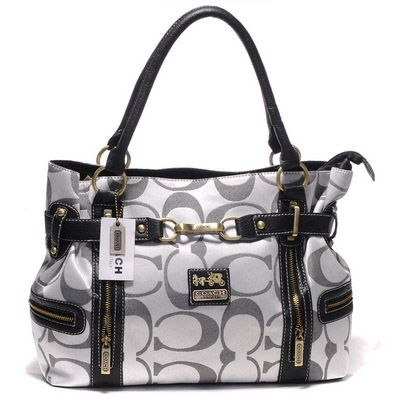 wow its a coach diaper bag..
