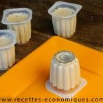 FLAMBYS THERMOMIX AGAR (2)