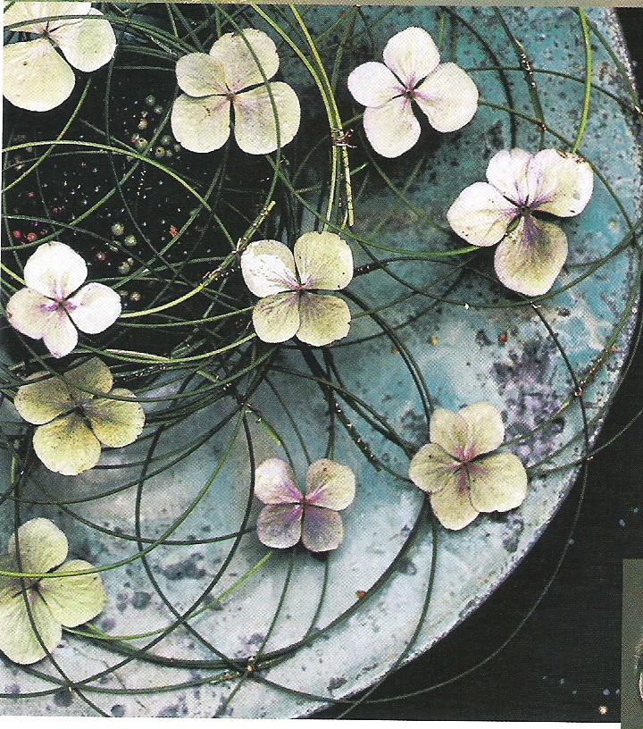 Just lovely.  Hydrangea florets and flexigrass over pepperberry.  Daniel Ost.