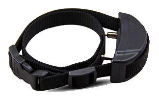 Best-Dog-Bark-Collar-WT-758-receiver-6
