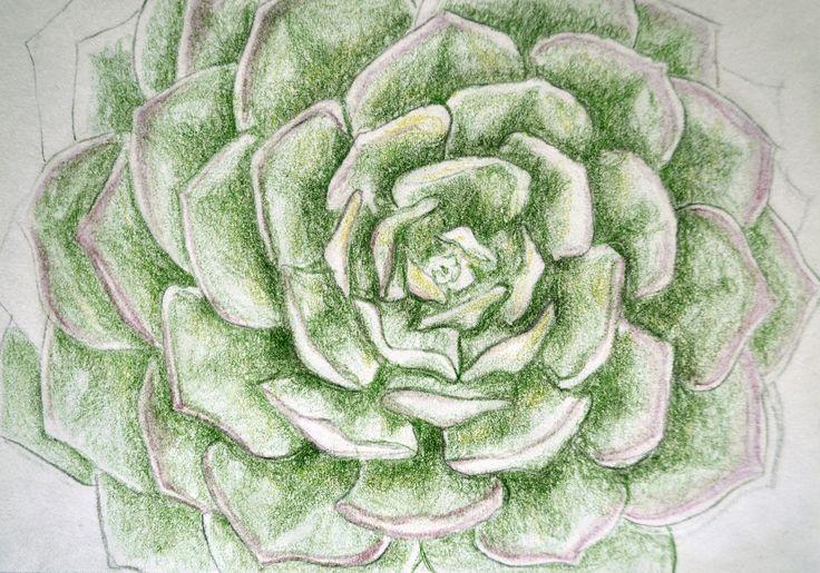 Ejercicios para libro de dibujo /Lapices de colores sobre papel por Jessica Millan G