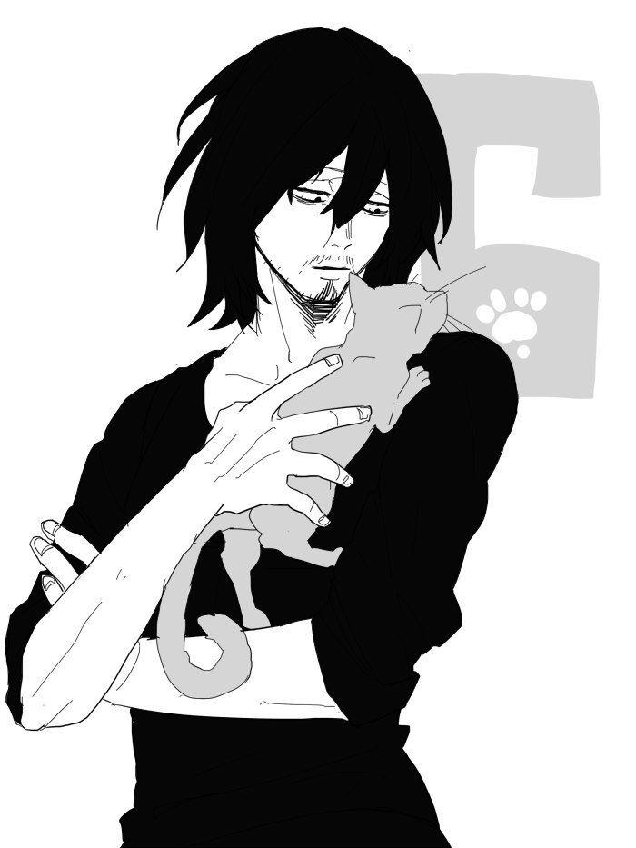 Aizawa Shouta VK Boku No Hero Pinterest Anime