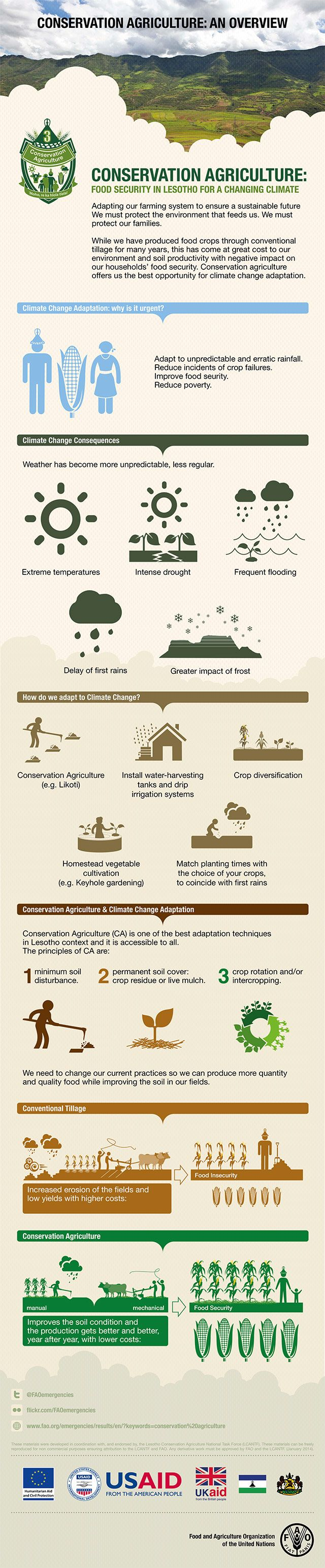 Conservation agriculture: an overview - We must protect the environment that feeds us. We must protect our families. While we have produced food crops through conventional tillage for many years, this has come at great cost to our environment and soil productivity with negative impact on our households' food security. Conservation agriculture offers us the best opportunity for climate change adaptation.
