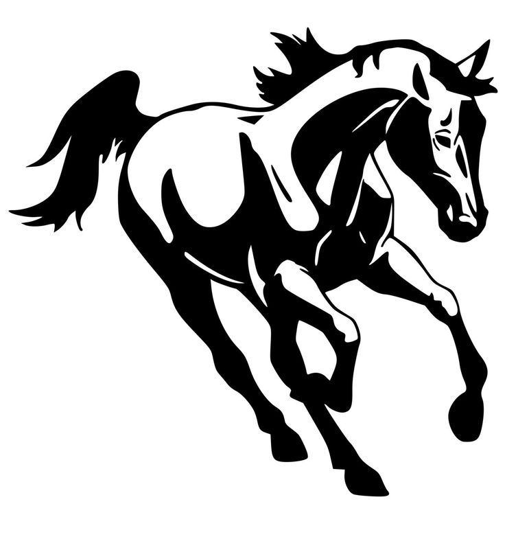 Horse- Mustang wall decal, Horse sticker 29 inches x 28 inches, 264-HS.