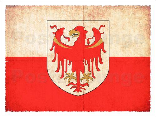 Christian Müringer Illustration Art - Alte Flagge von Südtirol (italien)