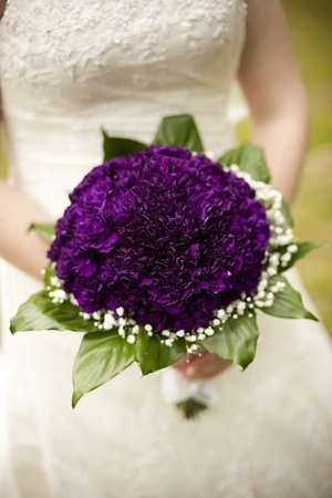 I love these flowers, the color is so deep!
