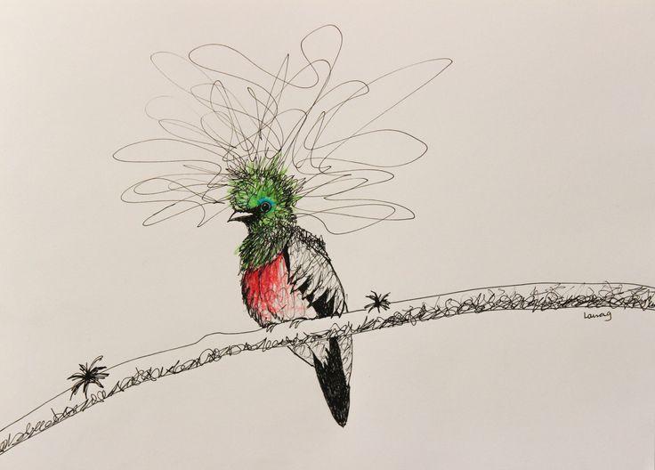 Dibujo Ave Quetzal, realizado con micropunta y prismacolor, tamaño carta #cuadrattolau