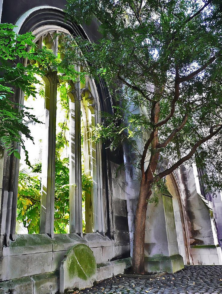 The medieval church of St-Dunstan-in-the-East, London, was bombed during the Blitz and transformed over half a century into a secret romantic overgrown ruin of a park that is rarely discovered, even by Londoners. You can be one of the fortunate few to visit, however, because here are my directions: Click for directions