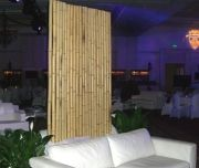 Séparation bambou