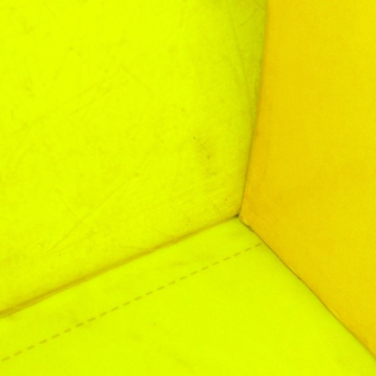 Final yellow photo, promise!