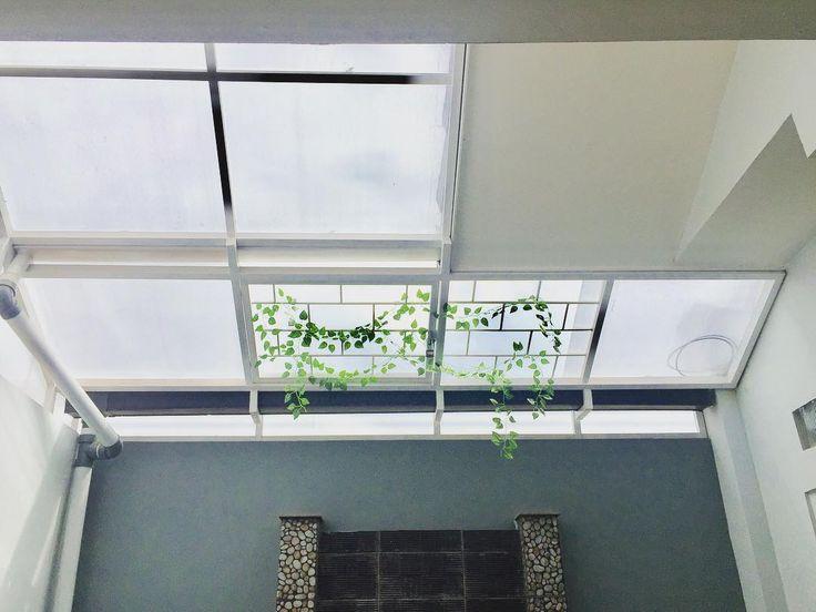 Buat yg penasaran atap belakang nya  dipasang canopy semacam dr fiber transparan biar tetap terang, bagian atas kolam sengaja dibuka biar masih ada angin sejuk masuk...  atau burung jg bisa masuk kaya td pagi  . . . . . #kolamnyabelumjadi #homesweethome  #inspirasitamanbelakang  #inspirasirumahminimalis  #bismillah  #alhamdulillah