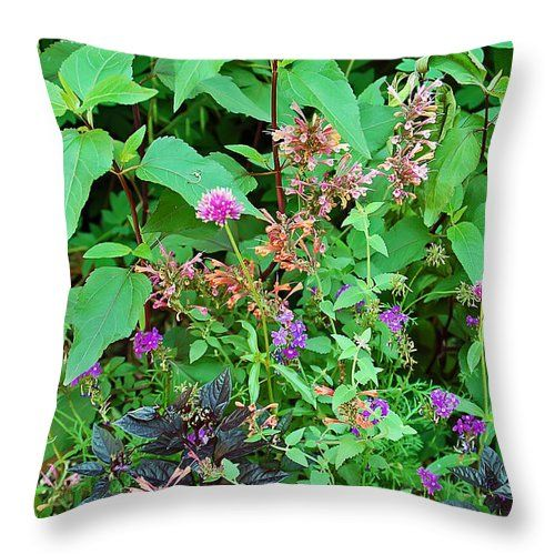 "Pretty Garden Throw Pillow for Sale by Aimee L Maher Photography and Art Visit ALMGallerydotcom. Our throw pillows are made from 100% spun polyester poplin fabric and add a stylish statement to any room. Pillows are available in sizes from 14""x14"" up to 26""x26"". Each pillow is printed on both sides (same image) and includes a concealed zipper and removable insert (if selected) for easy cleaning. Ships within 2-3 business days"