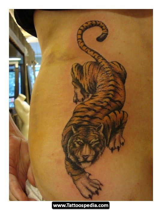 Best 25 tiger tattoo meaning ideas on pinterest tiger for Cross tattoo on forehead meaning