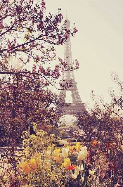 Paris in Spring. Yes, please! | By liz.rusby