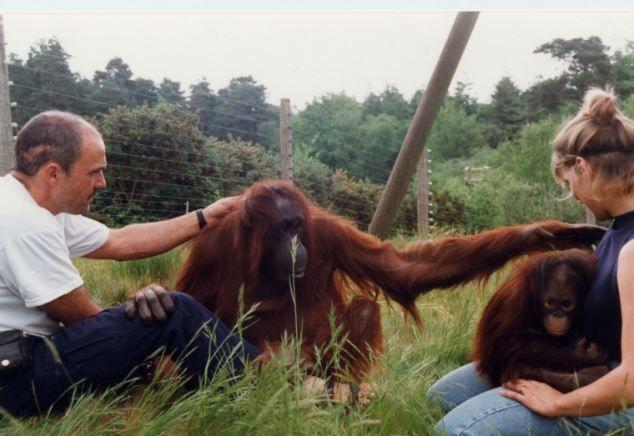 monkey world - Loving touch: Jeremy, Amy, Gordon and Jim Cronin's wife Alison at Monkey World