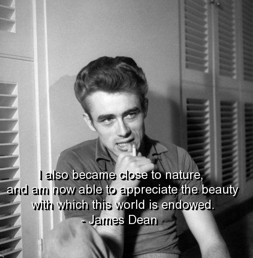 james dean, quotes, sayings, beauty, world, positive