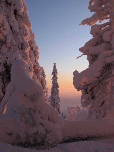 Evening in Iso-Syöte, Finland  #travel #snow #finland  lifewithsnow.tumblr.com