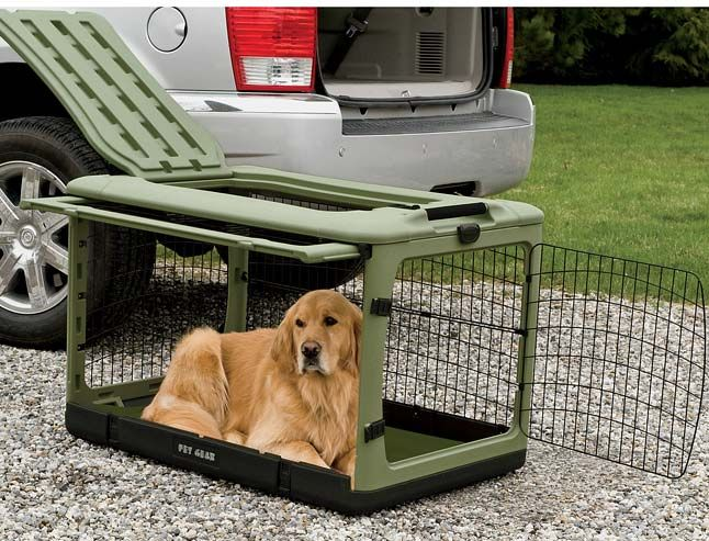 I have two...best crate I ever had. Opens in front, side and top and folds easily when not in use. Just found this Folding Dog Crate - Collapsible Dog Travel Crate -- Orvis on Orvis.com!