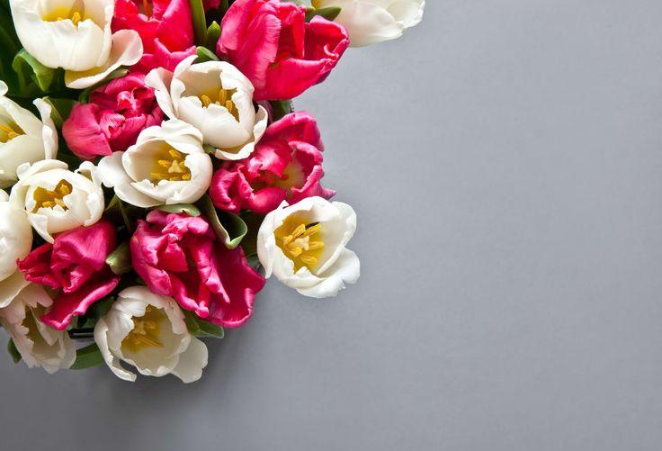 Co máme na jaře nejraději? Samozřejmě květy, které nám po zimě zlepší náladu a zároveň umí náš byt změnit knepoznání. Připomeňme si pět jarních kvítků, které nám toto období ještě zpříjemní. Pivoňky Pivoňky, ať už bílé či v odstínech červené a růžové, jsou ztělesněním romantičnosti a ženskosti. Rozkvetlé pivoňky se samy neztratí, ale vězte, že …