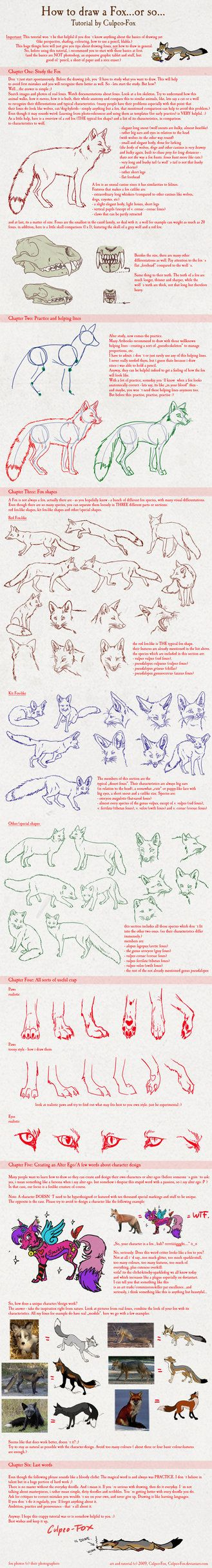 Fox drawing tutorial by Culpeo-Fox via deviantart ✤ || CHARACTER DESIGN REFERENCES | Find more at https://www.facebook.com/CharacterDesignReferences  http://www.pinterest.com/characterdesigh if you're looking for: anatomy, animals